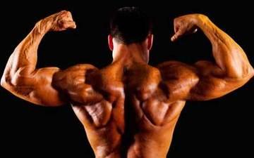 5个动作打造完美肩部