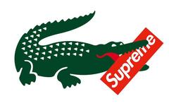 至尊鳄鱼,Supreme 将携手 Lacoste 推出联名系列