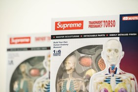Supreme 本季人体解剖模型单品大有来头?