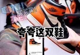 高级高贵高档,用什么词来形容这双鞋好呢