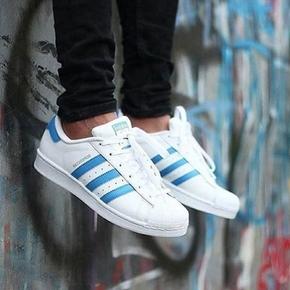 Adidas Superstar 白蓝 贝壳头 S75929