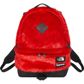 Supreme 20fw supreme/the north face faux fur backpack