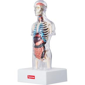 Supreme 18fw人体模型